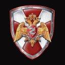 Погоны Войск Национальной Гвардии (ВНГ)