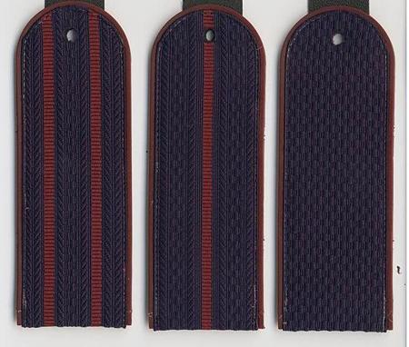 Погоны ФСИН (Федеральная служба исполнения наказаний)  на куртку ( пластик)