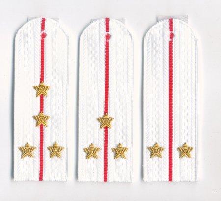Погоны на белую рубашку полиции и внутренней службы с вышитыми звездами (пластик)