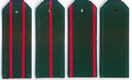 Погоны ВС на офисную форму с пришивными просветами (картон)