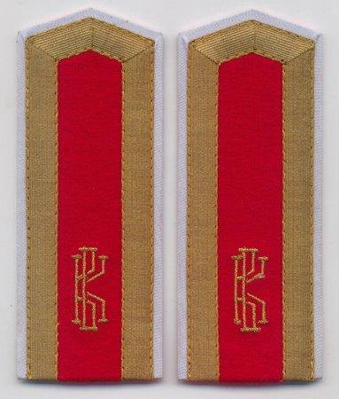 Погоны для кадетов с металлизированным галуном