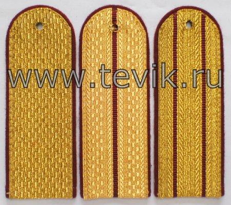 Погоны ФСИН (Федеральная служба исполнения наказаний)  на китель золото картон